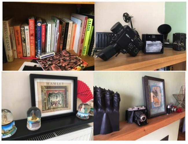 Sedgemoor #Shelfie campaign asks: 'What does your shelf say about you?'