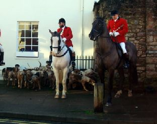 HORSEMEN gather with their hounds on the streets of the Sedgemoor village.