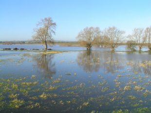 Work begins on clearing Somerset Levels of floodwater