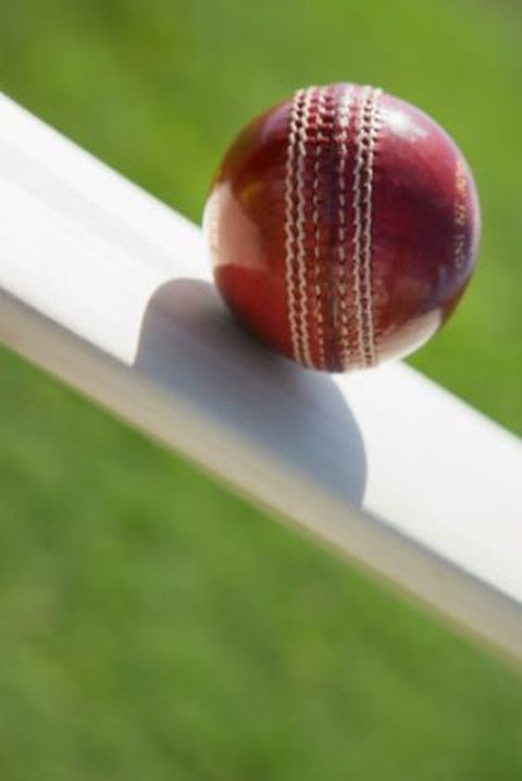 CRICKET: Somerset announce large profits