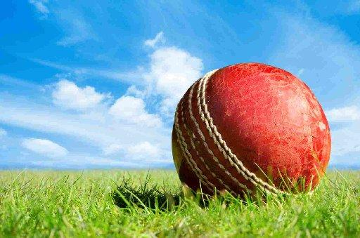 Cricket concludes with wins for Wembdon Academy and North Petherton 2nds