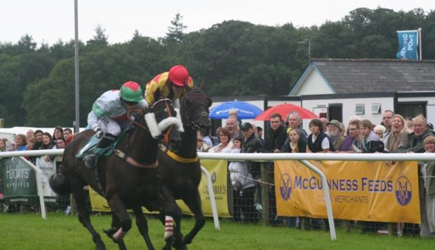 Hurdle action at Taunton Racecourse