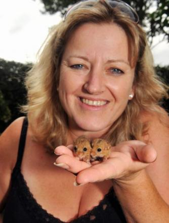 Secret World fundraising co-ordinator Debbie O'Keefe holds the dormice