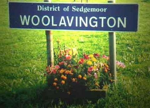 Homes and surgery planned for Woolavington