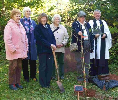Bridgwater Mercury: Merridge WI president Pam Pontin presented the tree while WI and PCC member Sue Ebsary helped with the planing. Rev Stephen Morley led a prayer of blessing