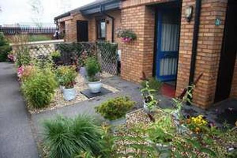 First Prize for the Small Garden category went to this entry from Mr & Mrs Cornish of Meads Court, Bridgwater. Photo: Homes in Sedgemoor