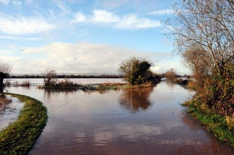 First flood surgery attracts 100