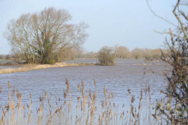 Flooding on the Somerset Levels, January 2014