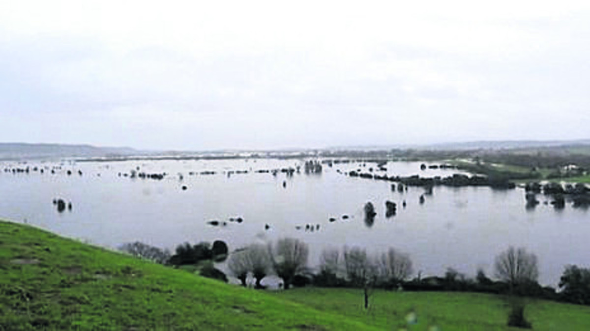 SOMERSET levels during the floods.