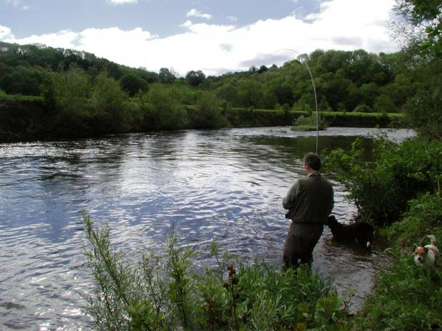 Wessex Water fisheries