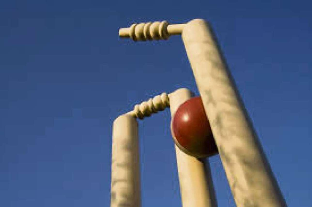 Somerset Cricket League round-up - All-rounder Tom seals Spaxton win