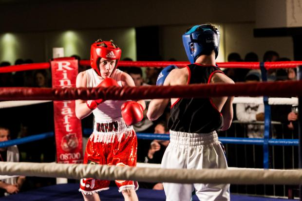 Bridgwater Mercury: Boxers put on knock-out show at Blake Hall