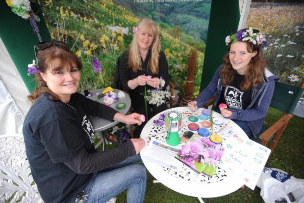 Wildlife Festival at Walled Gardens in Cannington