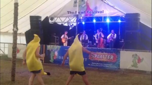 Bridgwater Mercury: VIDEO: Bananamen get boogie-ing at Newt Beer Fest 2014