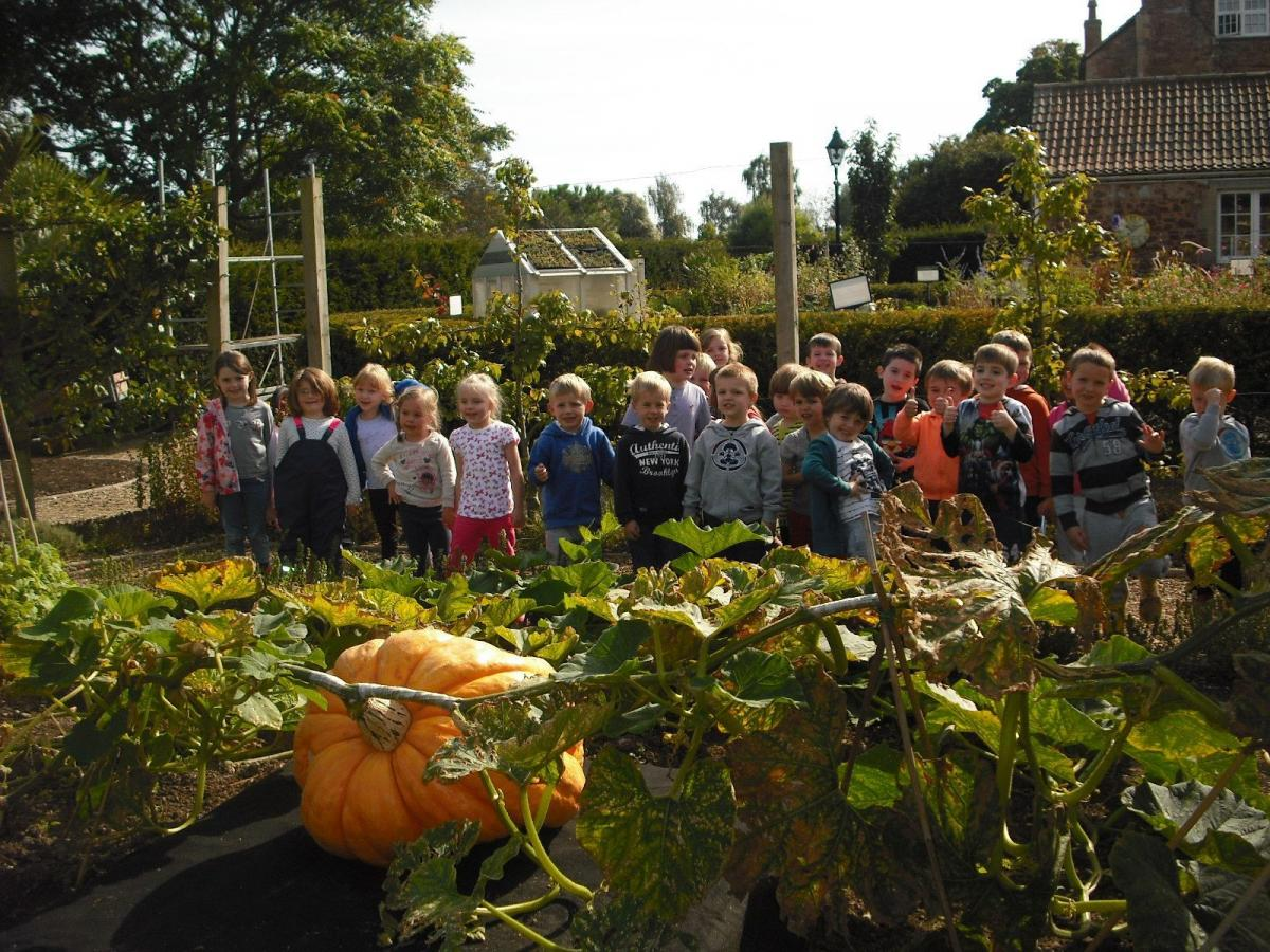 Meare Village Primary School enjoy visit to Walled Gardens of ...