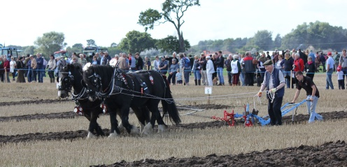 British National Ploughing Championships & Country Festival