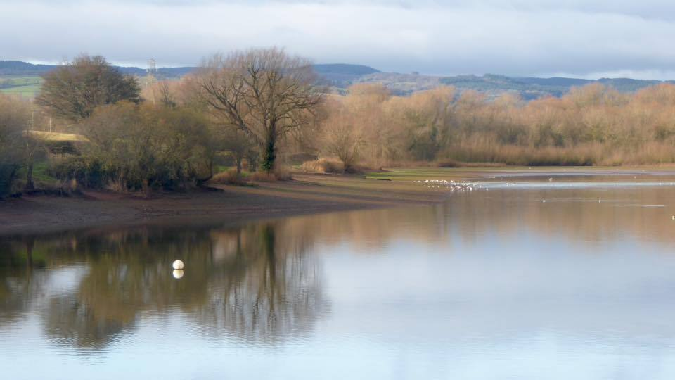 WINTER CALM: Durleigh Reservoir, by Roger Ballantine