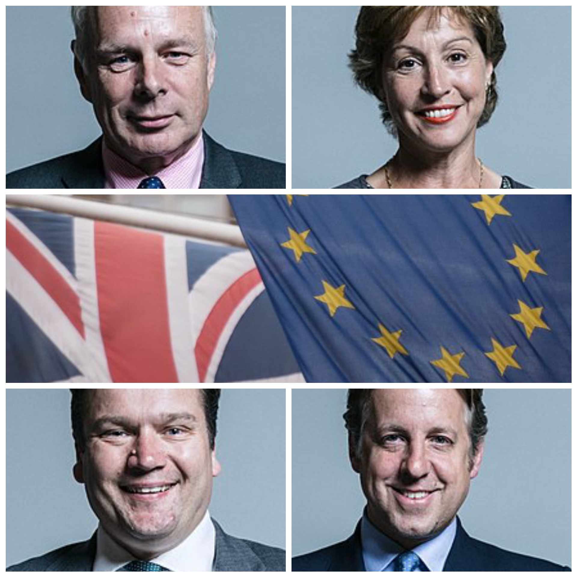 VOTES: Somerset MPs, clockwise from top left, Ian Liddell-Grainger, Rebecca Pow, Marcus Fysh and James Heappey