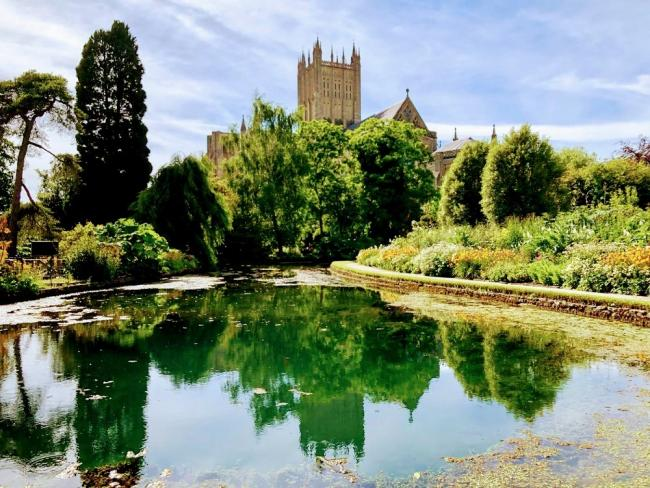 BISHOPS PALACE: The County Garden Festival celebrates its fifth year in Wells